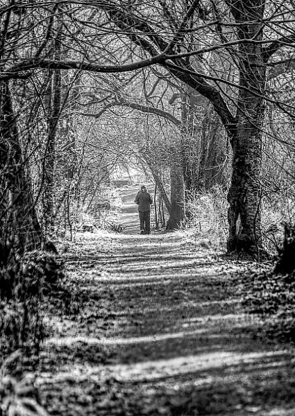 Autumn stroll by ScottishHaggis