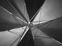 Photo : Umbrella