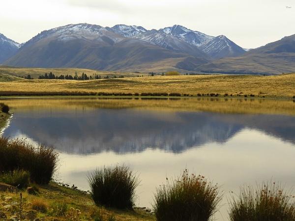 Lake Murray 12