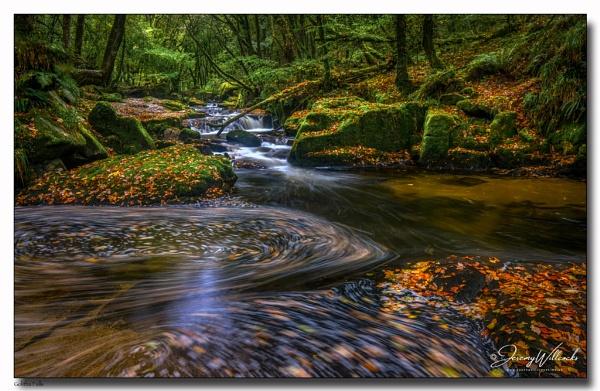 Golitha Falls by jer