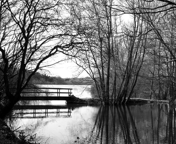Bridge to the Bittern Trail by Lontano