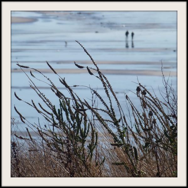 Seaside Stroll by Philip_H