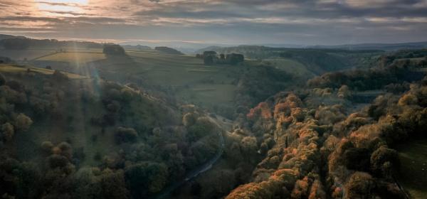 Autumn by Stevetheroofer