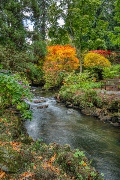 Autumn at Bodnant by Ingymon