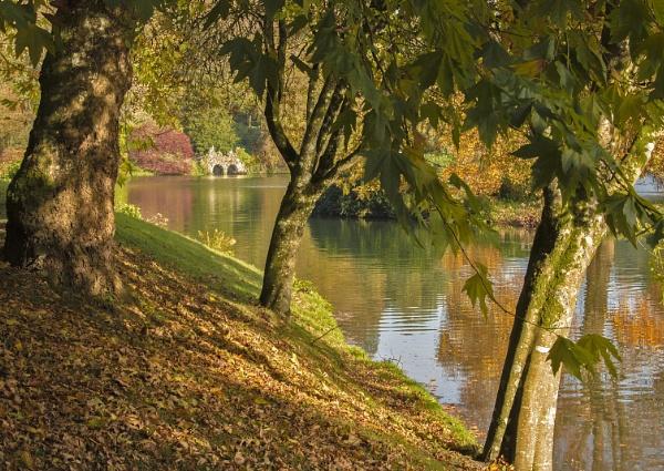 Lake Side Stourhead by Janetdinah