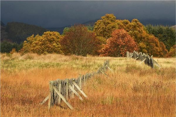 Autumn in Glenisla by MalcolmM