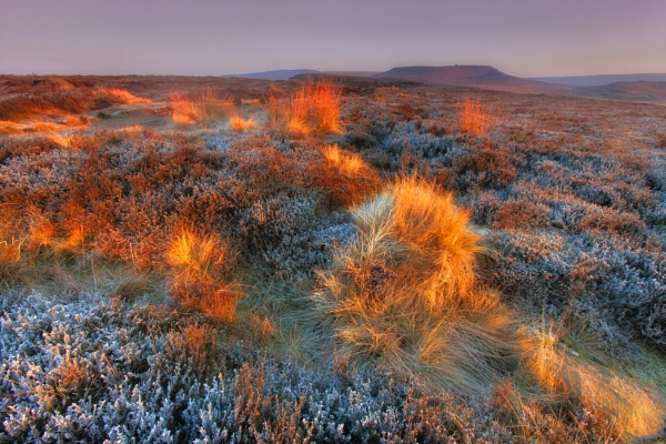 Fire and Frost by chris-p