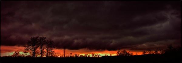 Everglade Storm by Zydeco_Joe