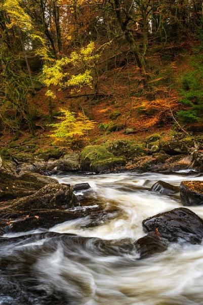 The Autumn Pallete by douglasR