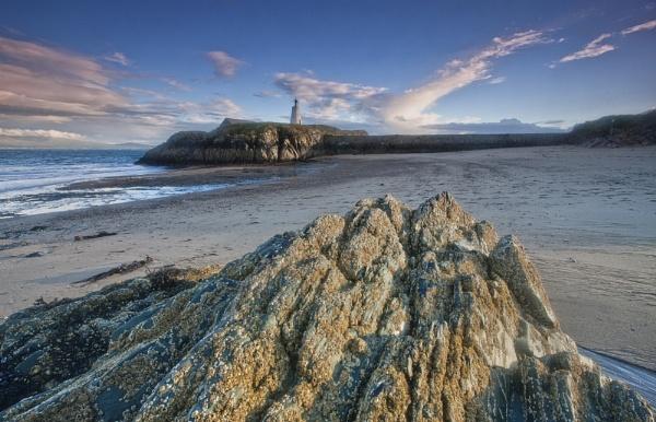 Llandwyn Island by pink