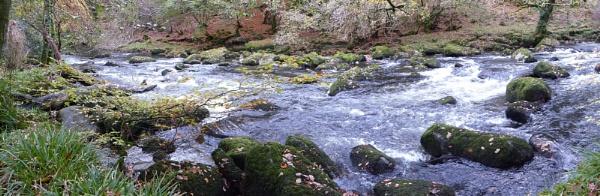 Afon Dwyfor by netta1234