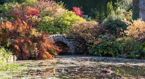 Ness botanic gardens by Danny1970