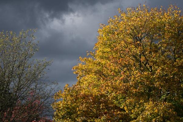 Stormy Autumn Sky by PRC