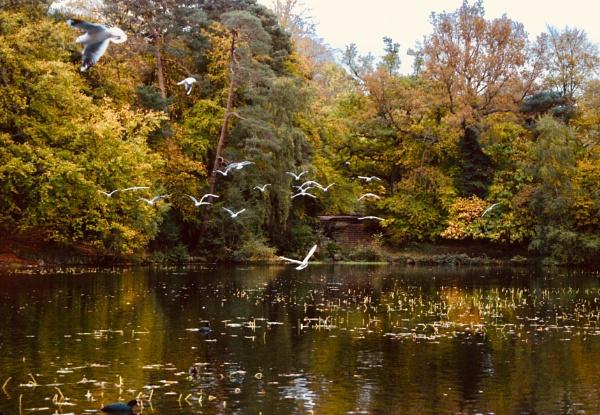 Autumnal by KrazyKA