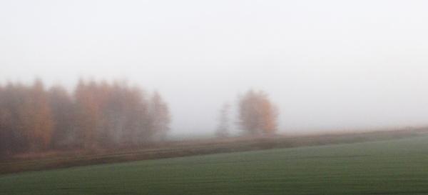 Homeland in the haze by SauliusR