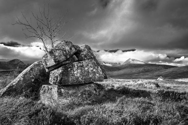 Rugged Moor by Billdad