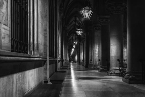Vienna City Hall by DBoardman