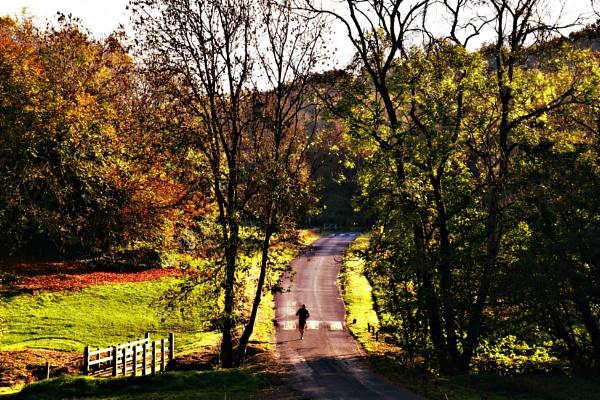 Autumnal morning run by nemasi