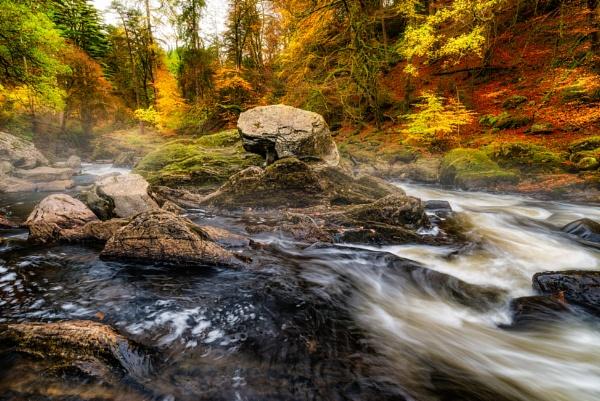 Magical Autumn by douglasR