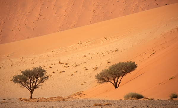 Wall of sand by rontear