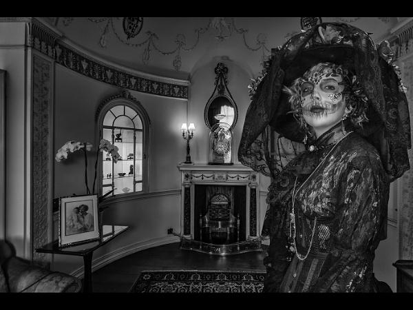 Her Ladyship by stevenb