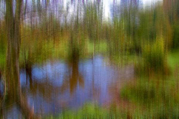 Motion by interchelleamateurphotography