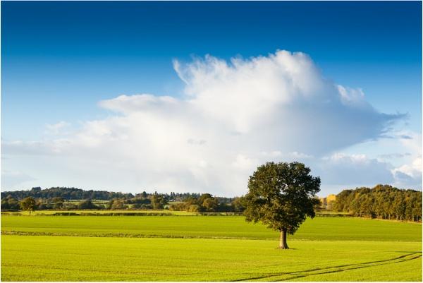 Simply Shropshire by dark_lord