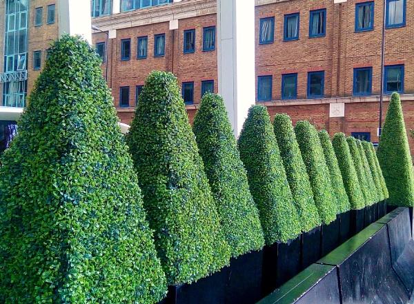 Street hedge by KrazyKA