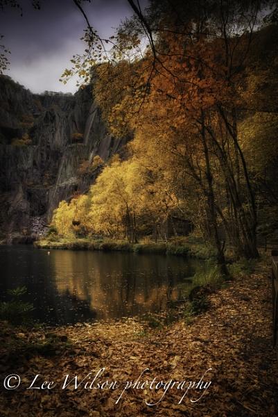 autumn in the slate mine