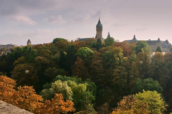 Autumn colours by LotaLota
