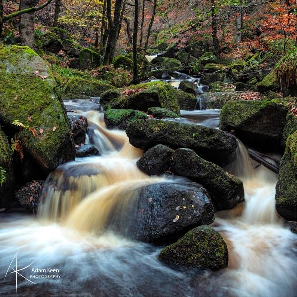 Brackish Waters by sherlob