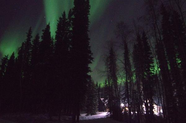 Lights Above by Rebeak