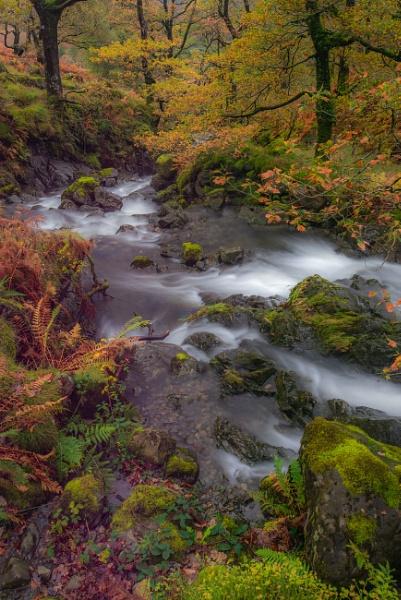 River Derwent by Stumars