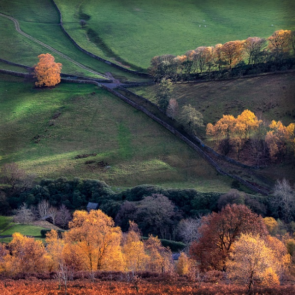 Autumn landscape by HelenaJ