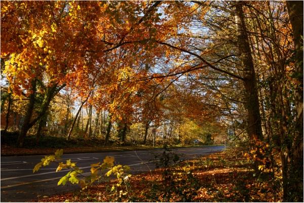 Wobaston Road by dark_lord