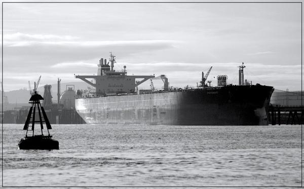 In port by jk