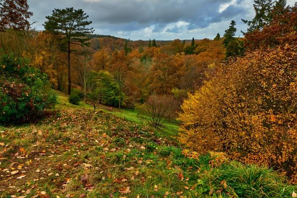 Autumn Scene by JJGEE