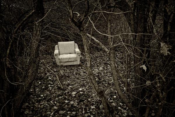 wayward arm_chair by leo_nid