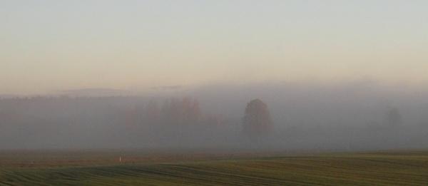 Homeland in the haze a by SauliusR