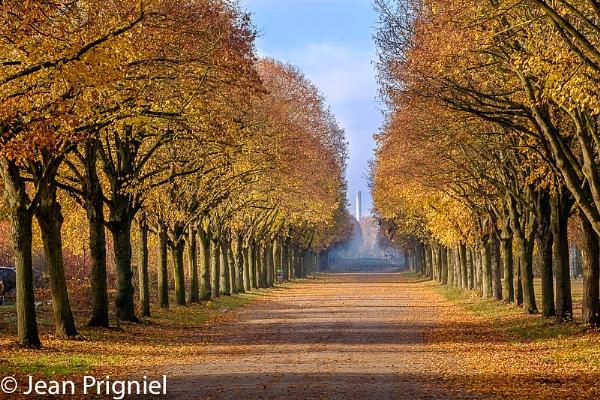 automne by Jprigniel