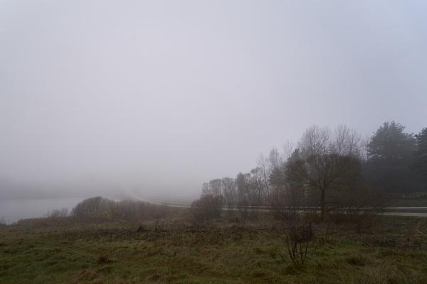 Mist in the road by LotaLota