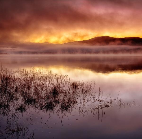 Rising Damp by chris-p