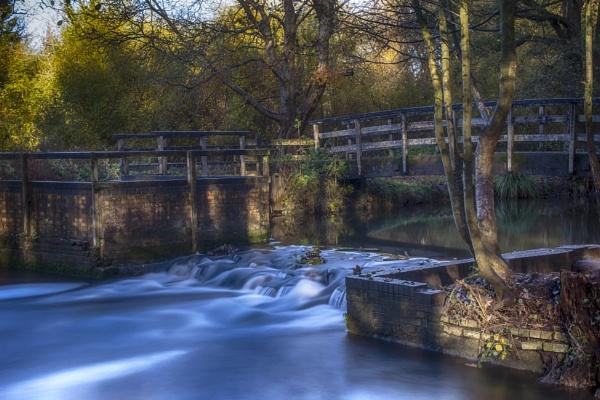 Wickham water meadow.2