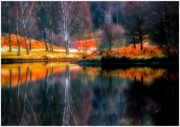 Autumn Glow by mac