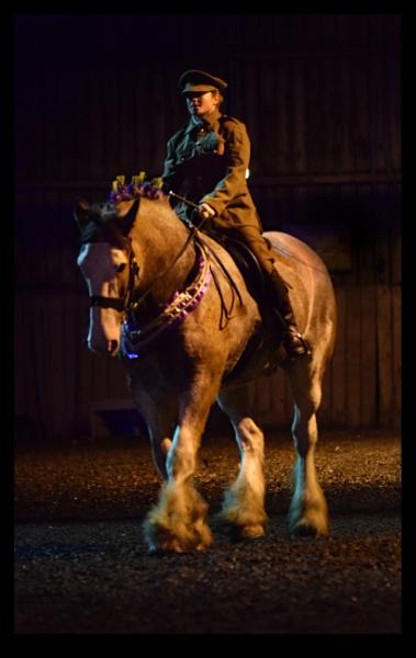 War horse by PCarman
