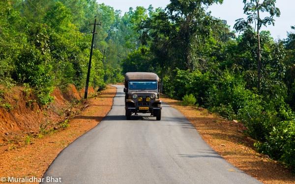 Jeep Ride in Kodachadri, Karnataka, India by mikebhat