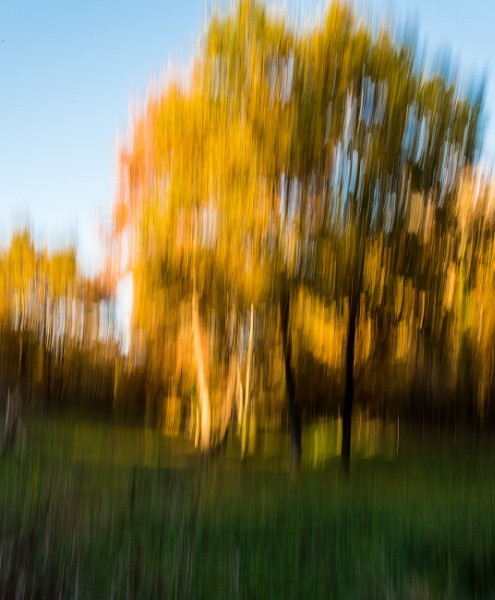 Autumn impressions  2 by jacomes