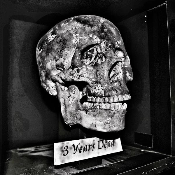 Skullduggery  by KrazyKA
