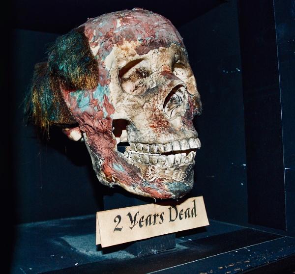 Dead head by KrazyKA