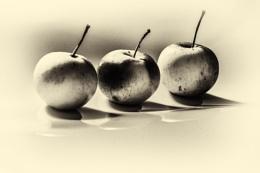 Photo : Apples